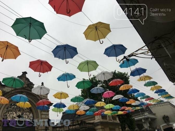 Коли у Новограді-Волинському  з'явиться своя алея парасольок?, фото-2