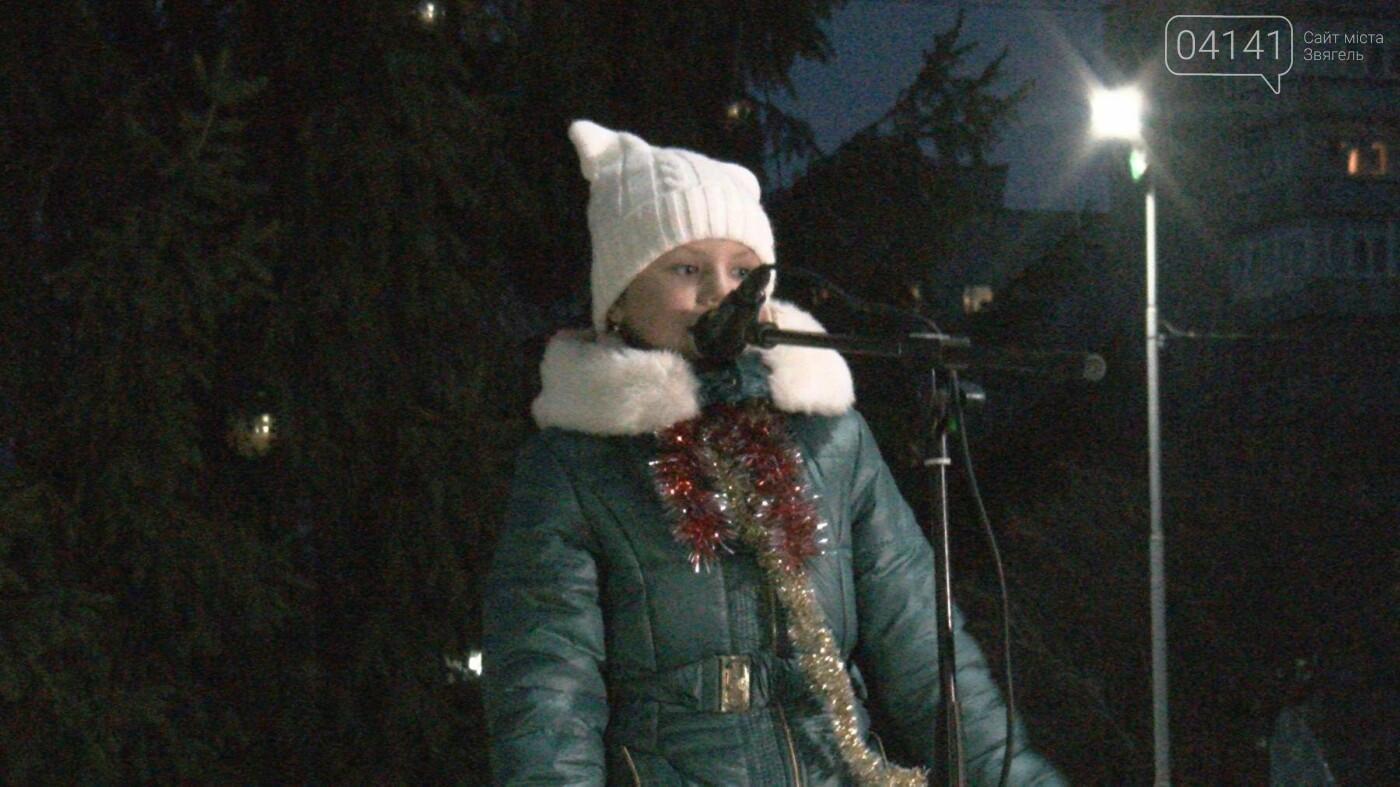 У Новограді-Волинському відкрили головну новорічну ялинку (ФОТО, ВІДЕО), фото-3