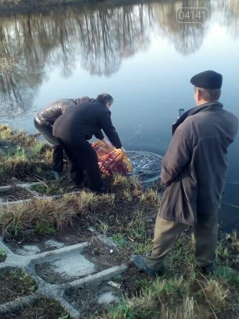 Ставок площею 54,5 га має намір здати в оренду Новоград-Волинське міжрайонне управління водного господарства, фото-1