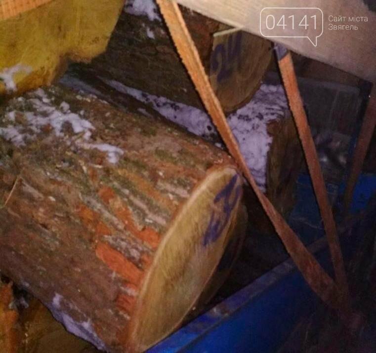 На Житомирщині виявили вантажівку з деревиною невідомого походження, фото-1