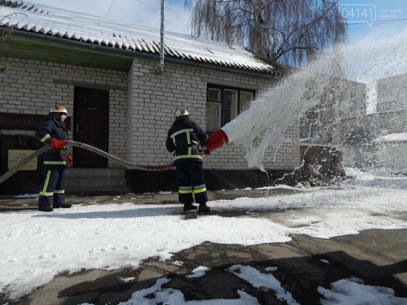 У Новограді-Волинському відбулася громадська акція «Запобігти. Врятувати. Допомогти!», фото-1