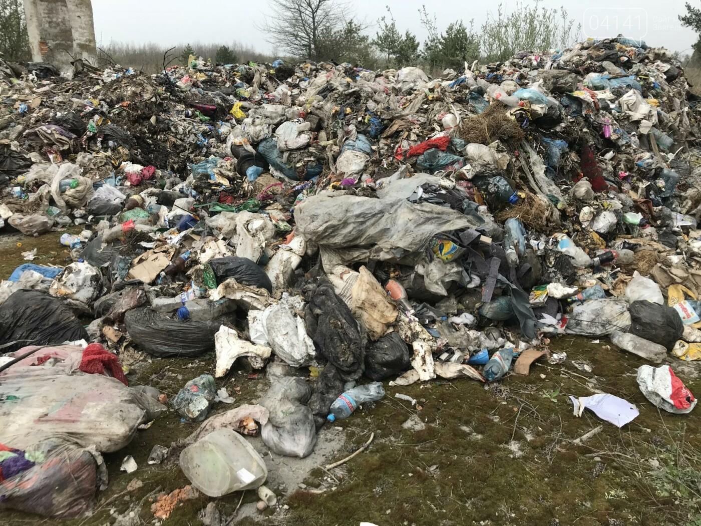 """Вкотре """"нагадили"""": В Новоград-Волинському районі виявили черговий несанкціонований скид сміття (ФОТО), фото-6"""