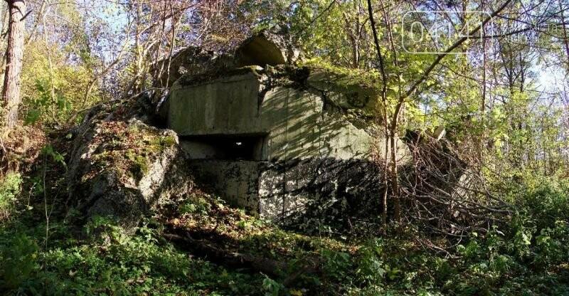 Лінія Сталіна в Новоград-Волинському районі, фото-1