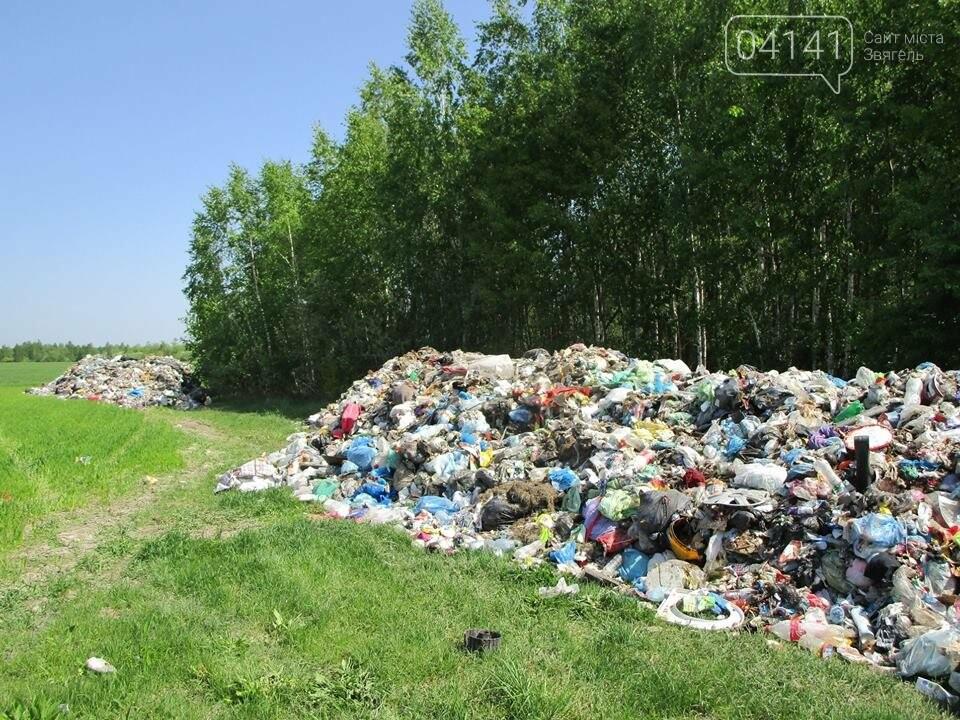 """Біля Вірівки в Ємільчинському районі виявили """"львіське сміття"""", фото-2"""