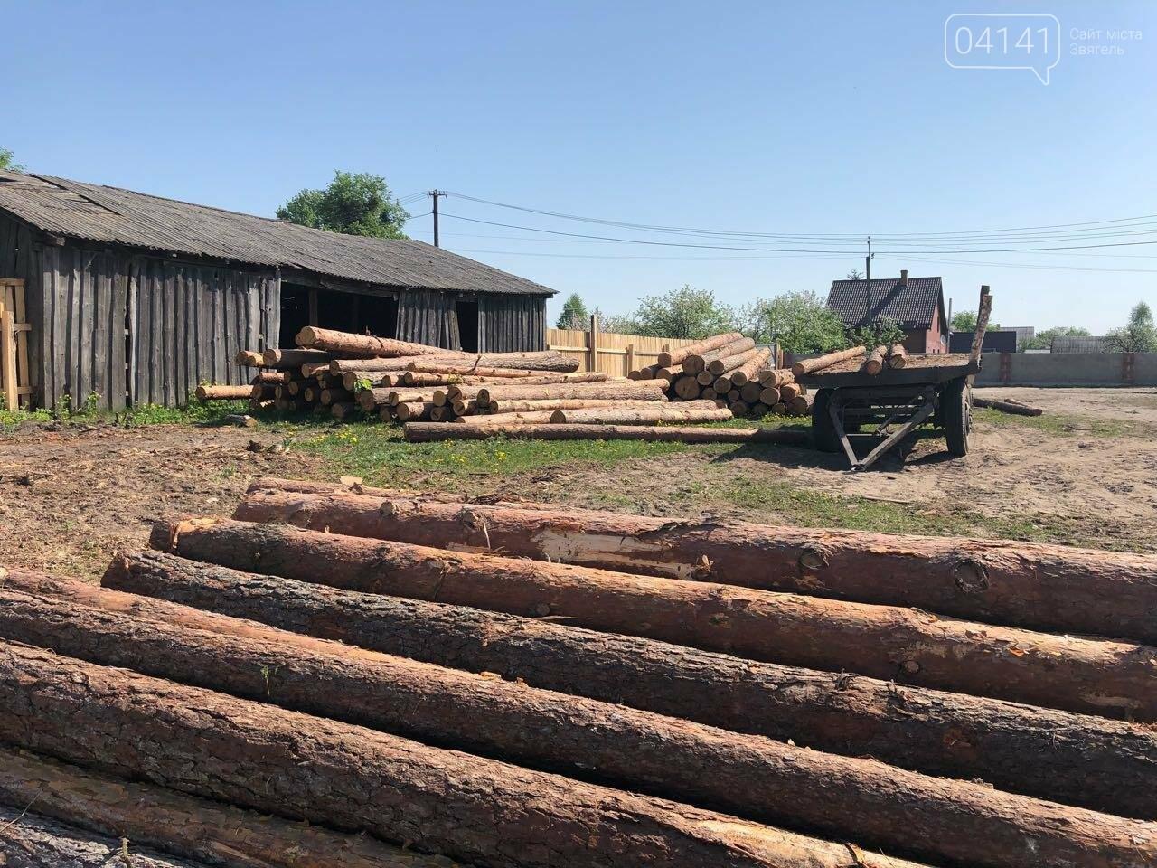 """В рамках """"Городницької справи"""" поліція накрила пилораму, де зберігалася незаконно зрубана деревина, фото-3"""
