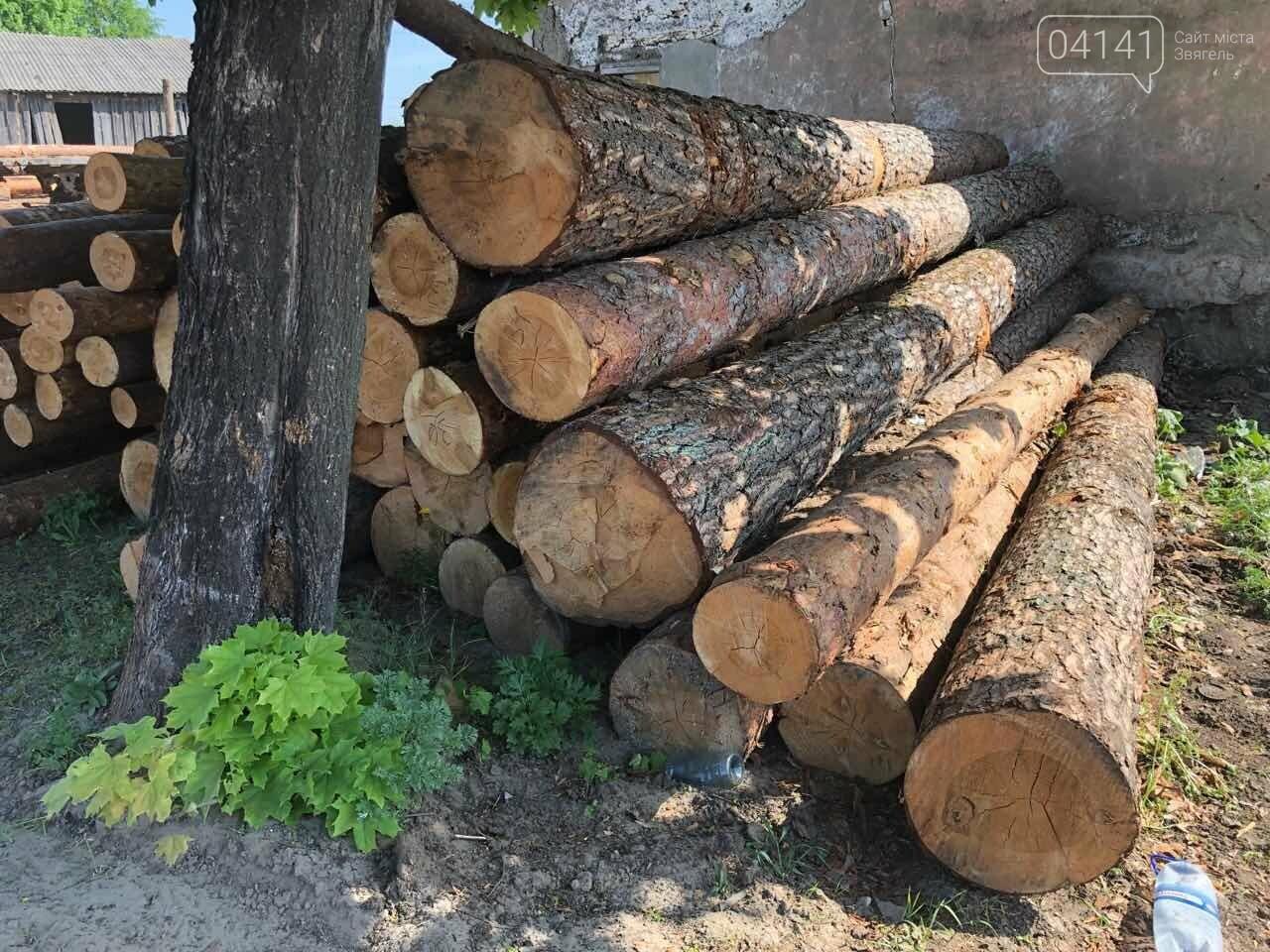 """В рамках """"Городницької справи"""" поліція накрила пилораму, де зберігалася незаконно зрубана деревина, фото-4"""