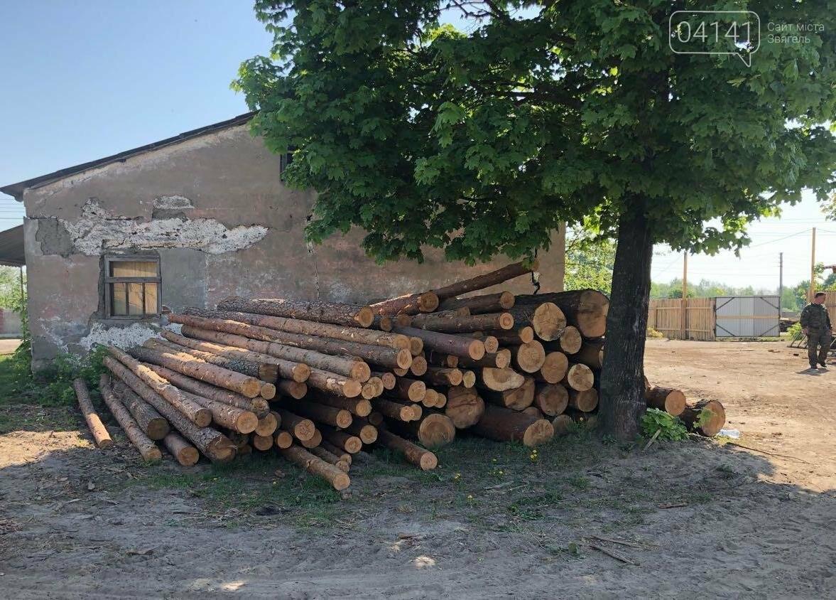 """В рамках """"Городницької справи"""" поліція накрила пилораму, де зберігалася незаконно зрубана деревина, фото-5"""