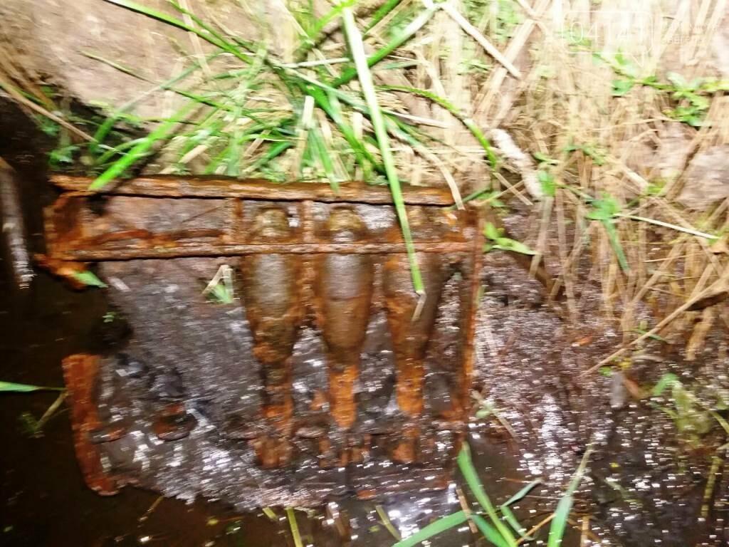 У Новограді-Волинському виявили небезпечні знахідки, фото-2