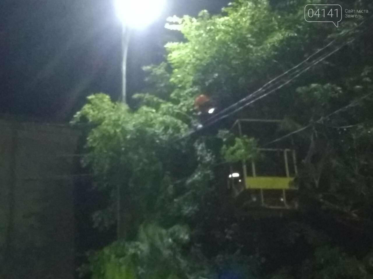 Замикання лінії електропередач ледь не призвело до пожежі в центрі Новограда-Волинського, фото-3