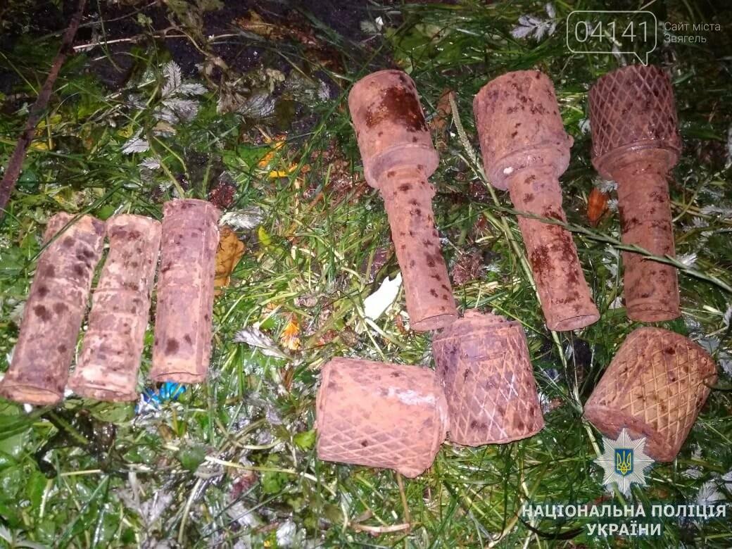 На Житомирщині травмувався чоловік через вибух воєнного боєприпаса, фото-1