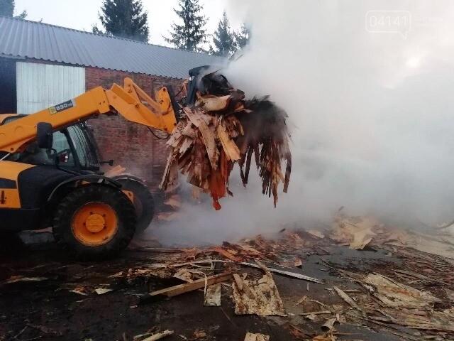 На Житомирщині горіла пилорама , фото-2