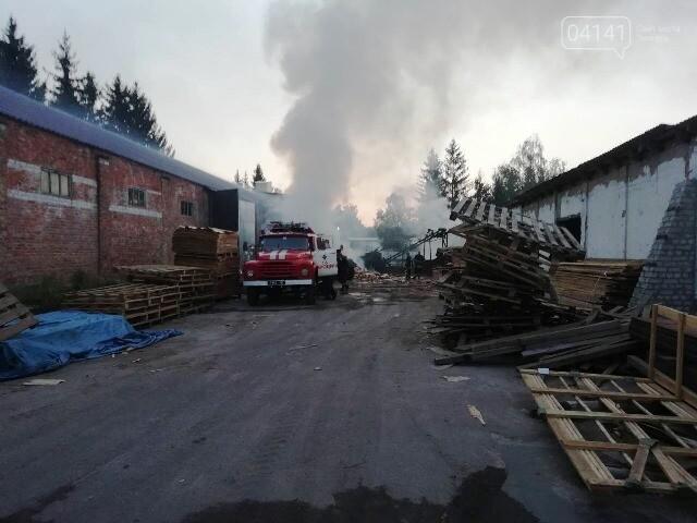 На Житомирщині горіла пилорама , фото-1
