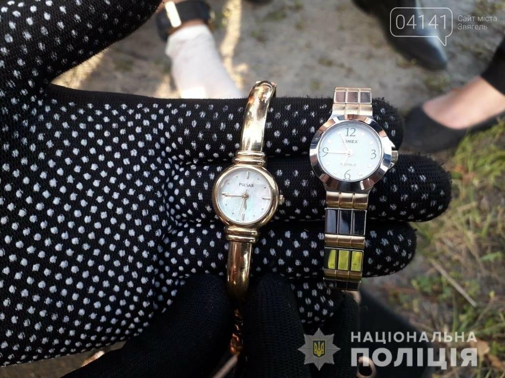 У Новограді-Волинському затримали чоловіка, який викрав золотих прикрас на 50 000 грн, фото-1