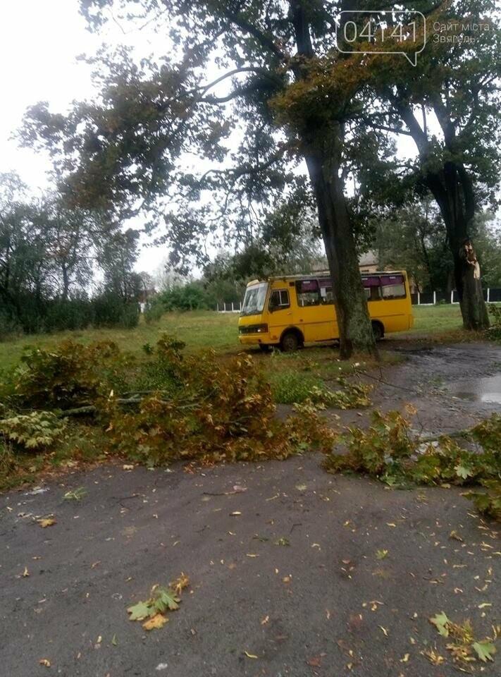 У Новограді-Волинському вітер наробив лиха (ФОТО, ВІДЕО), фото-8
