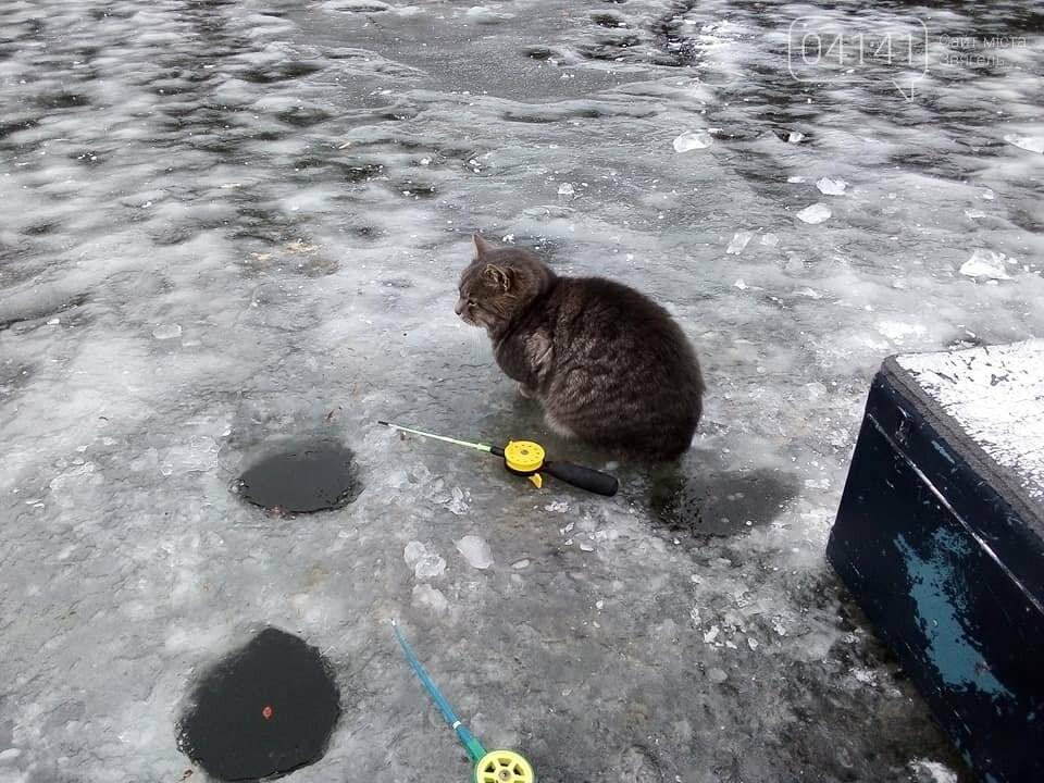 """Щука """"зачотна"""": Рибалки діляться світлинами здобутих трофеїв на Житомирщині, фото-5"""