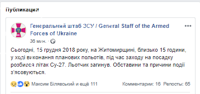 На Житомирщині розбився літак Су-27: загинув пілот, фото-1