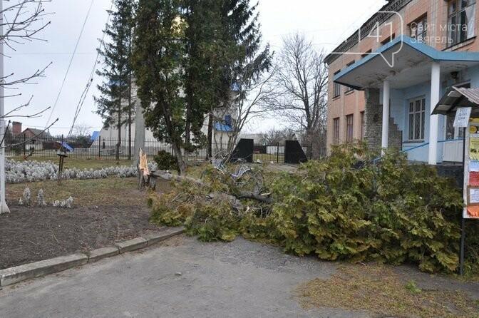 У Новограді-Волинському знесло дах будинку (ФОТО), фото-5