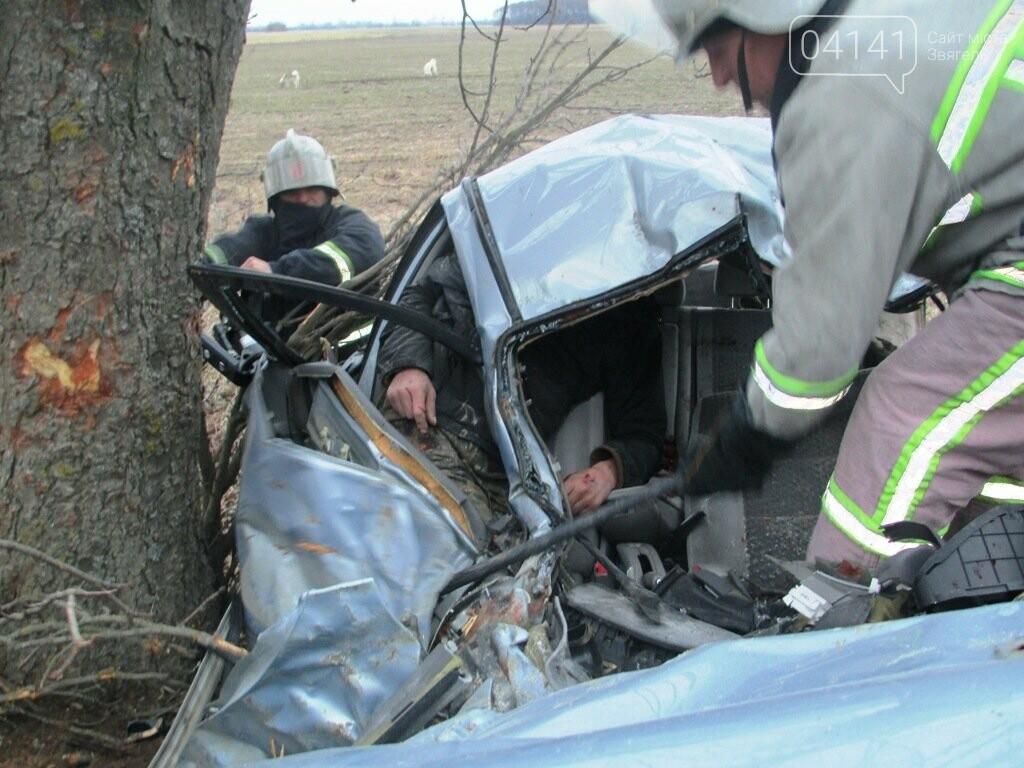 Пулинський район: рятувальники деблокували постраждалого пасажира з понівеченого внаслідок ДТП автомобіля, фото-1