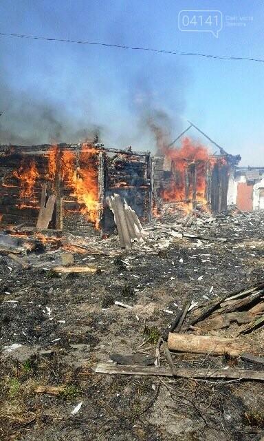 Жахливі наслідки випалювання сухої трави в Новоград-Волинському районі, фото-1