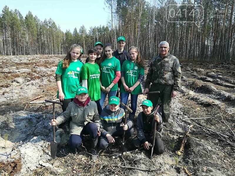 Школярі з Новоград-Волинського району висадили гектар лісу, фото-2