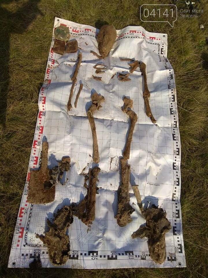 У Новоград-Волинському районі пошуківці знайшли останки двох солдатів часів Другої світової війни, фото-7
