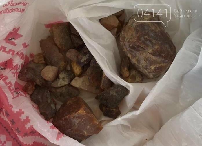 На Житомирщині СБУ припинила діяльність організованого угруповання з незаконного видобутку і збуту бурштину, фото-4