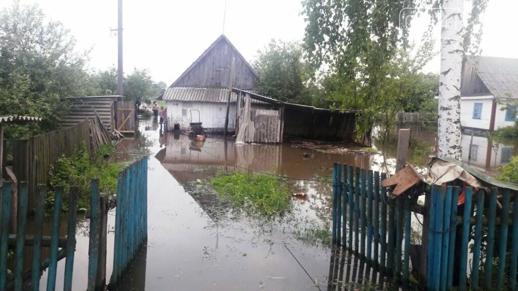 У Новоград-Волинському районі рятувальники продовжують надавати допомогу населенню по відкачці ґрунтових вод , фото-2