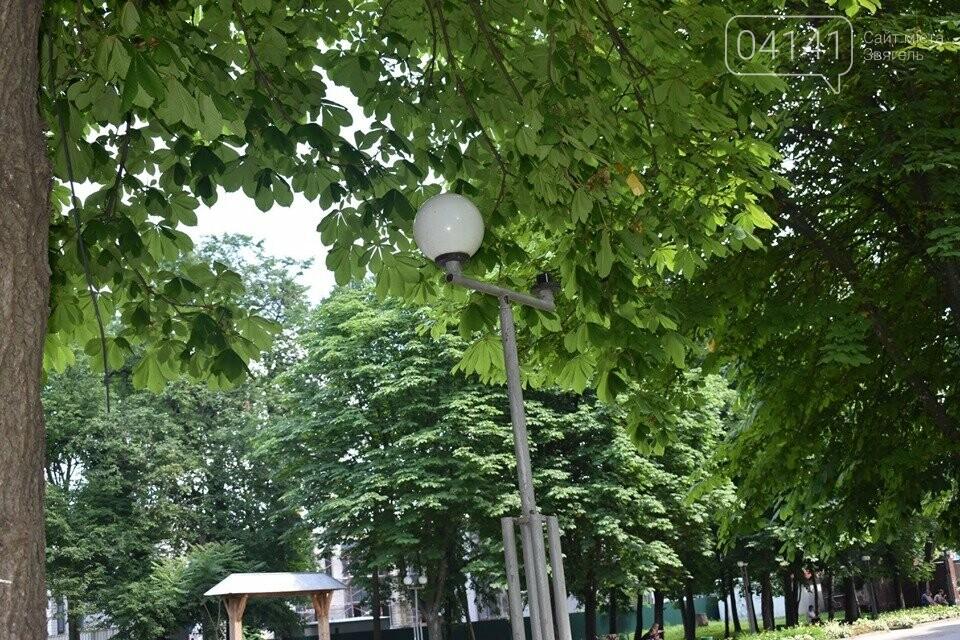 Вандали трощать комунальне майно в Новограді-Волинському, фото-3