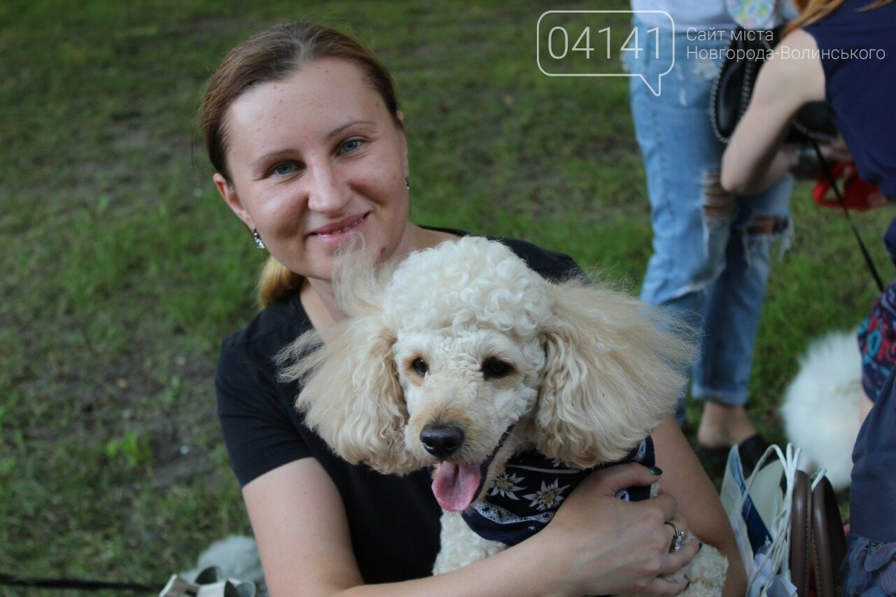 Мі-мі 2019: У Новограді-Волинському проходить фестиваль домашніх тварин (ФОТО, ВІДЕО), фото-7