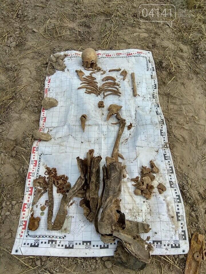 Назавжди невідомі: На Новоград-Волинщині знайшли рештки солдат, які загинули у 1941 році (ФОТО), фото-15