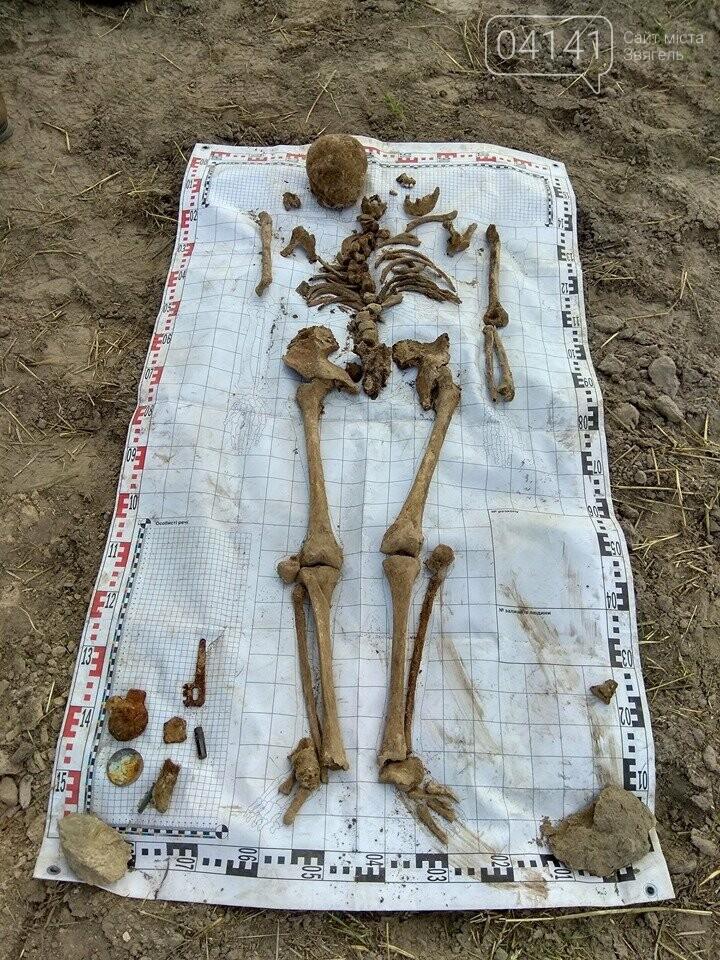Назавжди невідомі: На Новоград-Волинщині знайшли рештки солдат, які загинули у 1941 році (ФОТО), фото-12