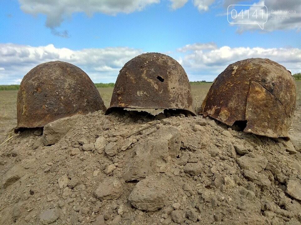 Назавжди невідомі: На Новоград-Волинщині знайшли рештки солдат, які загинули у 1941 році (ФОТО), фото-6