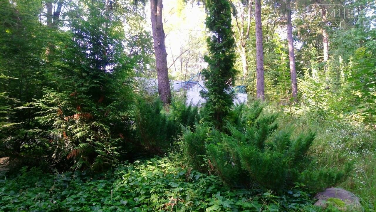 Городницький парк - пам'ятник садово-паркового мистецтва на Новоград-Волинщині, фото-11