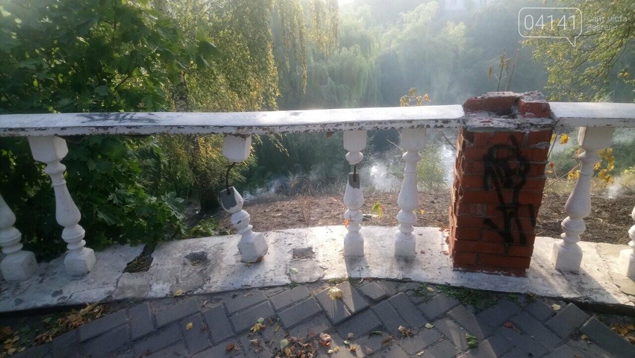 Як Вам дихається новоград-волинці?: На Болгарах масово палять траву (ФОТО, ВІДЕО), фото-2