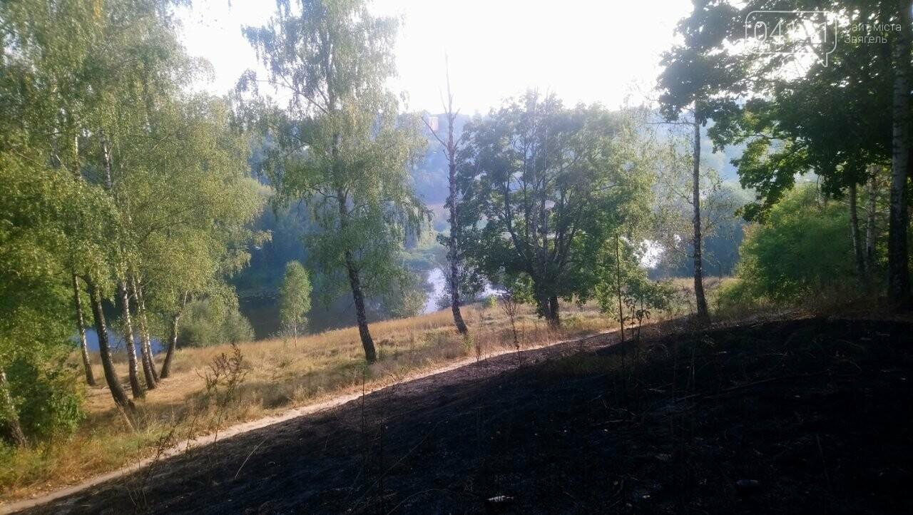 Як Вам дихається новоград-волинці?: На Болгарах масово палять траву (ФОТО, ВІДЕО), фото-3