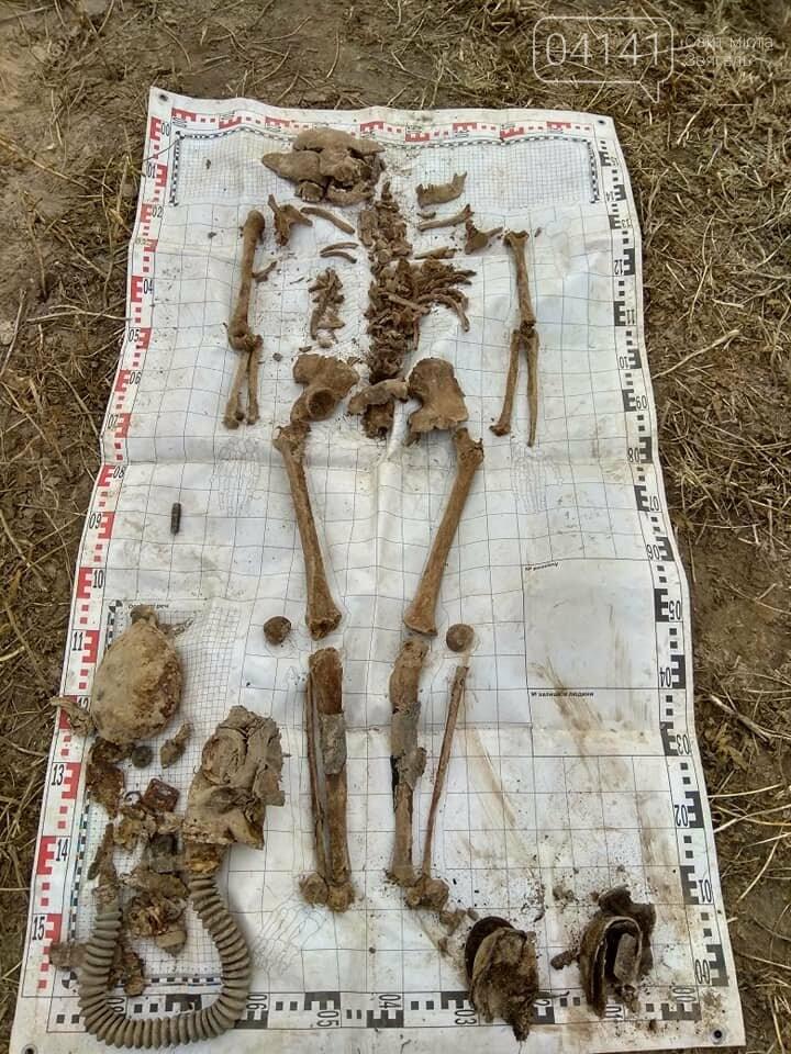 Вкотре на Новоград-Волинщині знайшли останки солдата часів II - Світової війни, фото-3