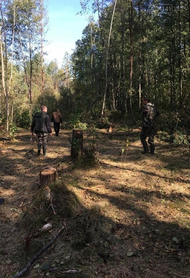 У Новоград-Волинському районі намагались вивезти лісопродукцію на суму 177 тис. 577 грн., фото-4