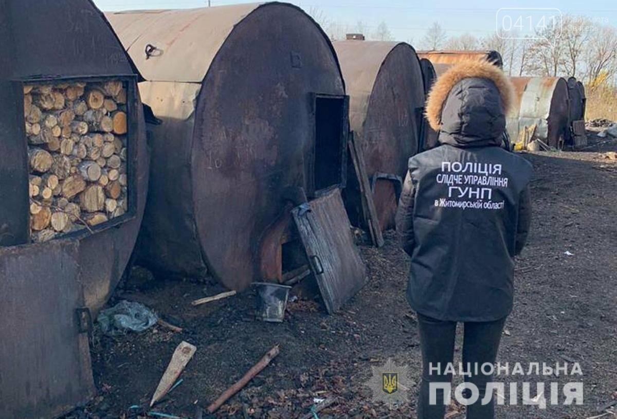 На Новоград-Волинщині викрили масштабну схему розкрадання лісу для експорту, фото-1