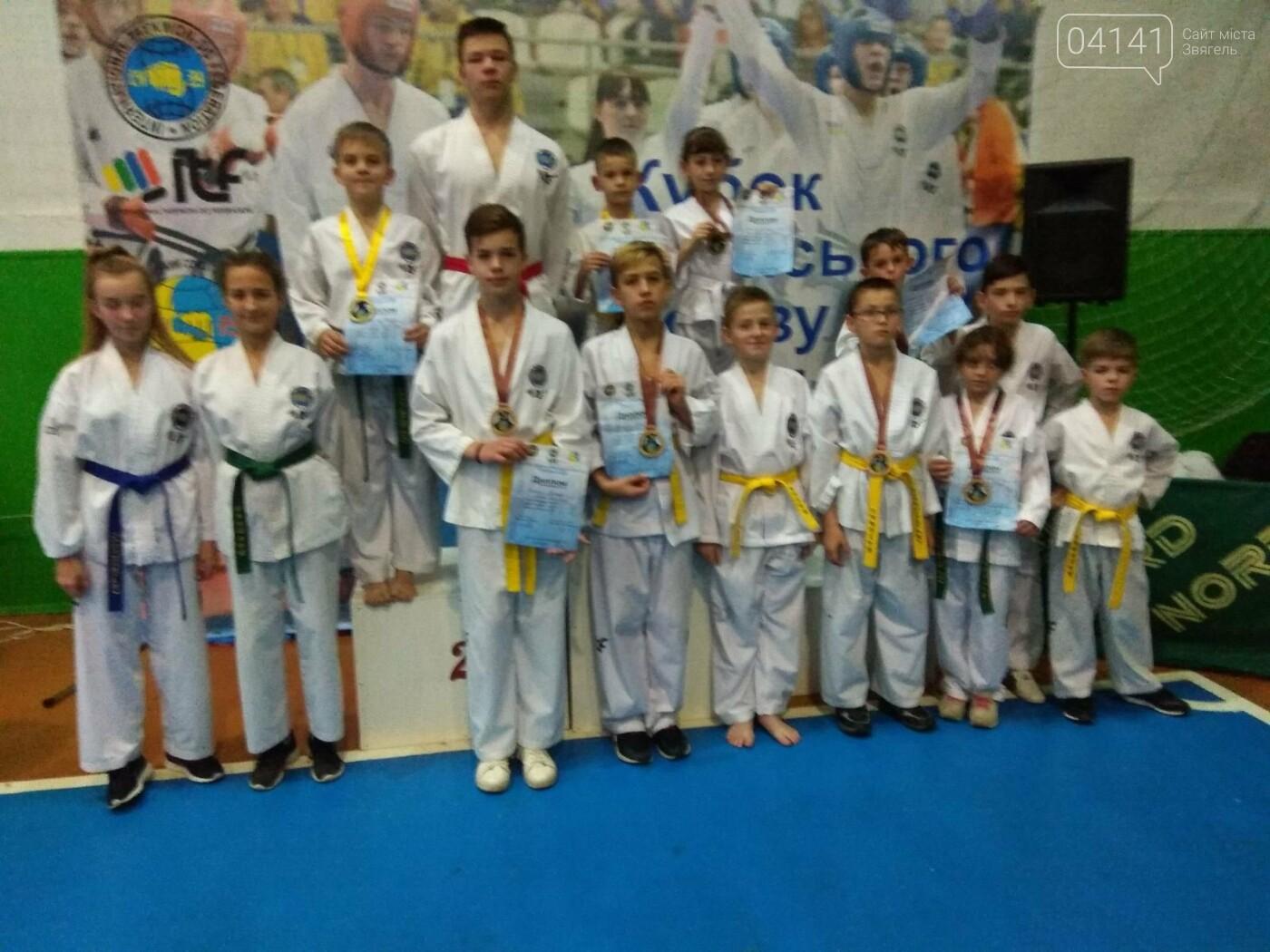 11 медалей здобули звягельчани на «Кубку Всеукраїнського Союзу Таеквон - До» в Житомирі (ФОТО, ВІДЕО), фото-2