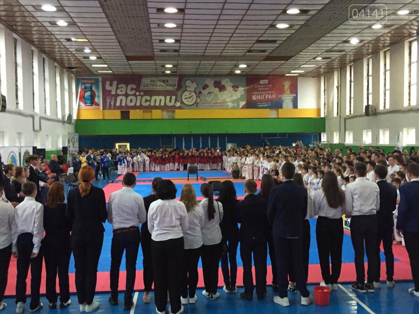 11 медалей здобули звягельчани на «Кубку Всеукраїнського Союзу Таеквон - До» в Житомирі (ФОТО, ВІДЕО), фото-3