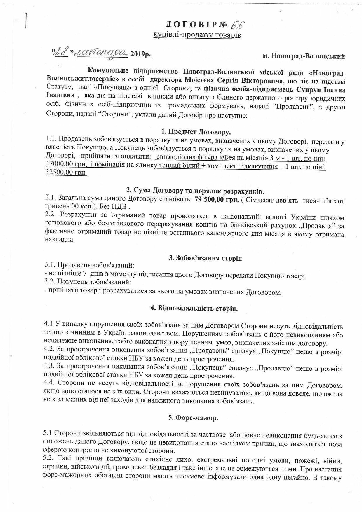 Скільки з бюджету Новограда-Волинського витратили на новорічну «Фею на місяці», фото-1