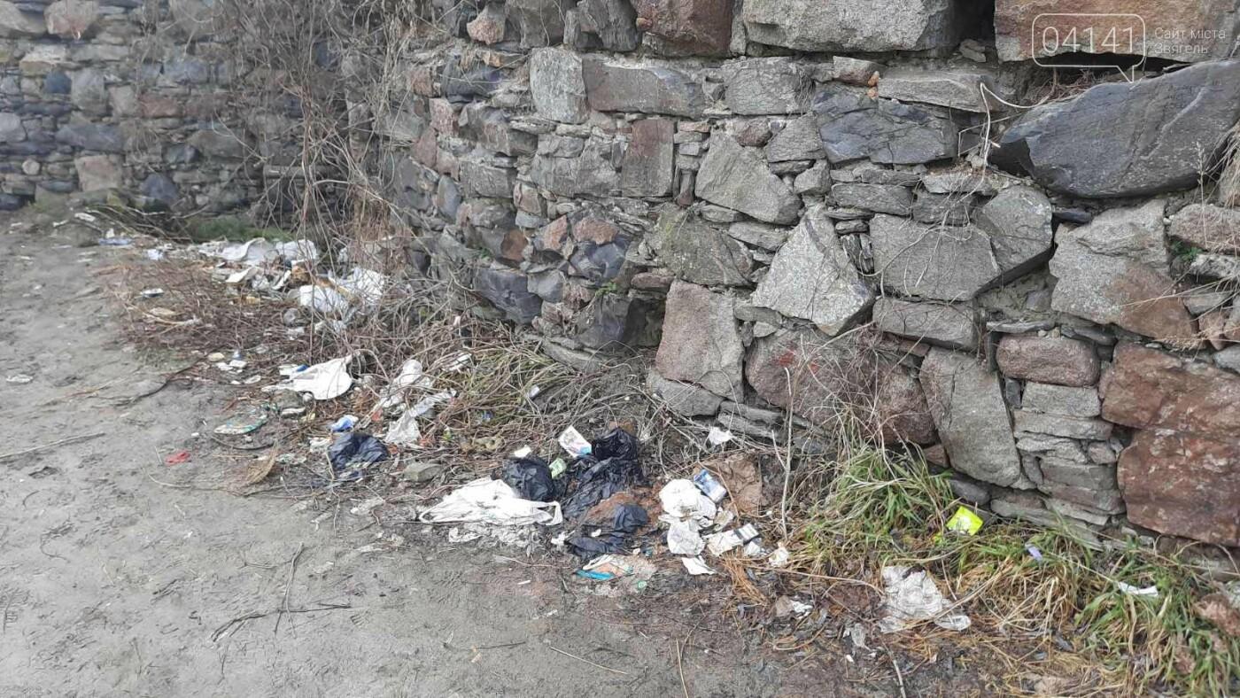 Як в Новограді проходить толока з прибирання сміття біля Фортеці (ФОТО), фото-2