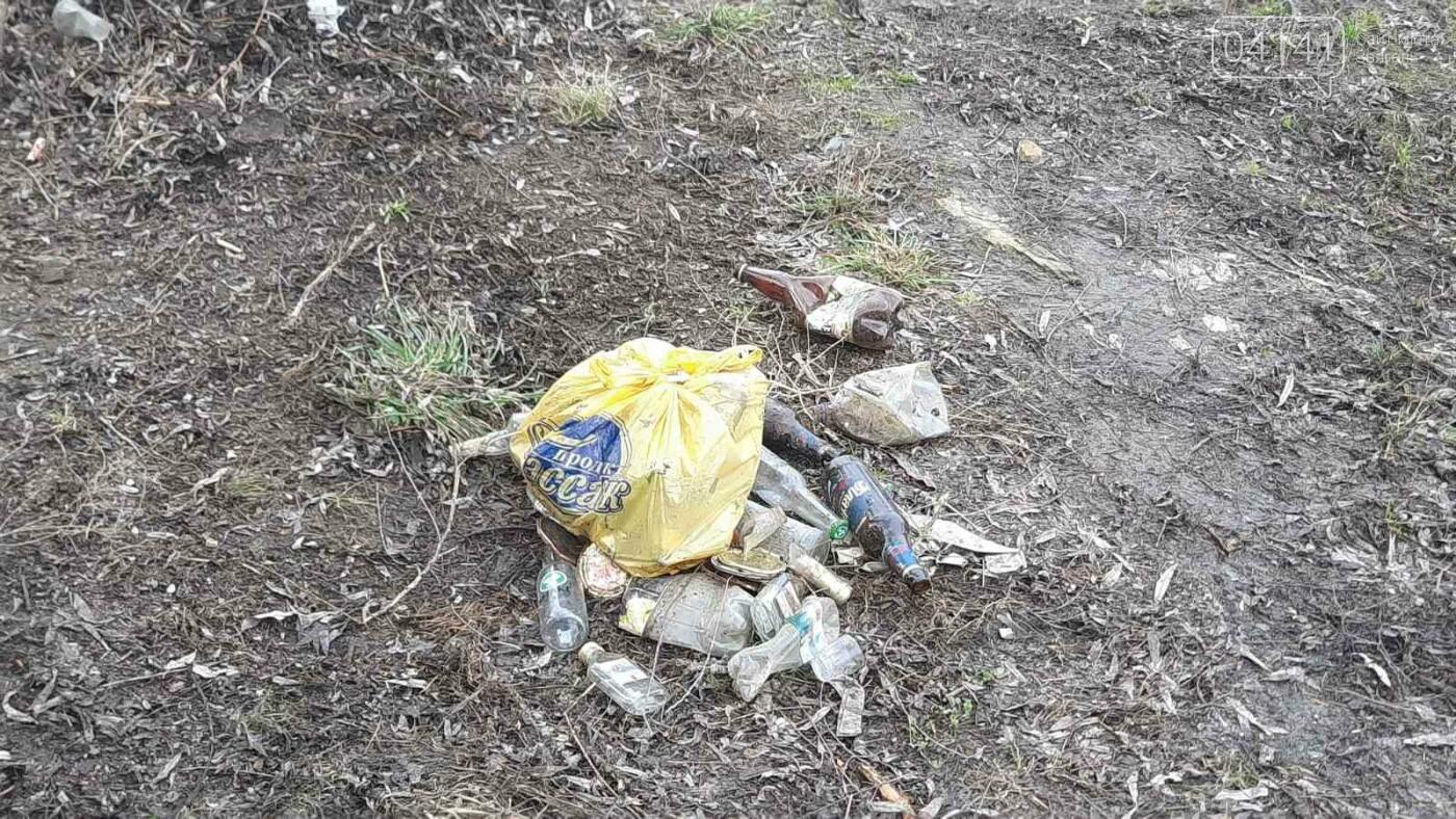 Як в Новограді проходить толока з прибирання сміття біля Фортеці (ФОТО), фото-4