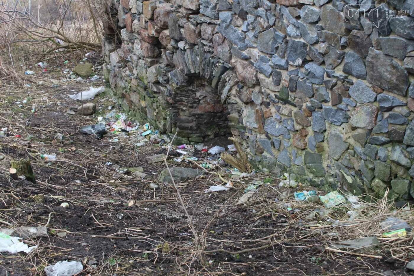 Як в Новограді проходить толока з прибирання сміття біля Фортеці (ФОТО), фото-3