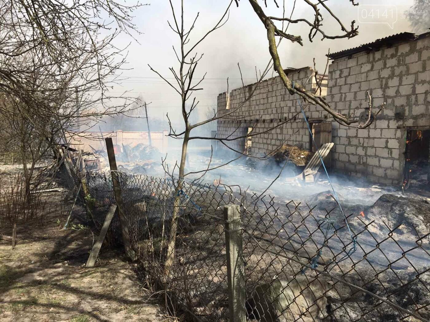 Чотири пожежі за добу сталося на Новоград-Волинщині (ФОТО), фото-2