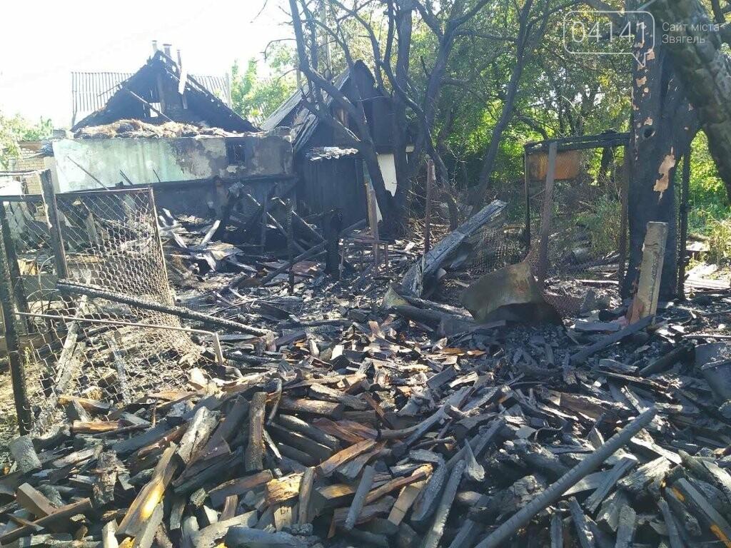 У Новограді під час пожежі вогнеборці врятували два житлових будинки, фото-3