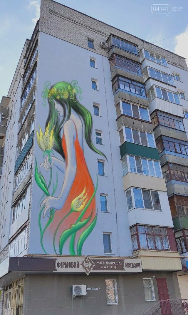 У Новограді почали малювати мурал: Що на ньому буде зображено, фото-1