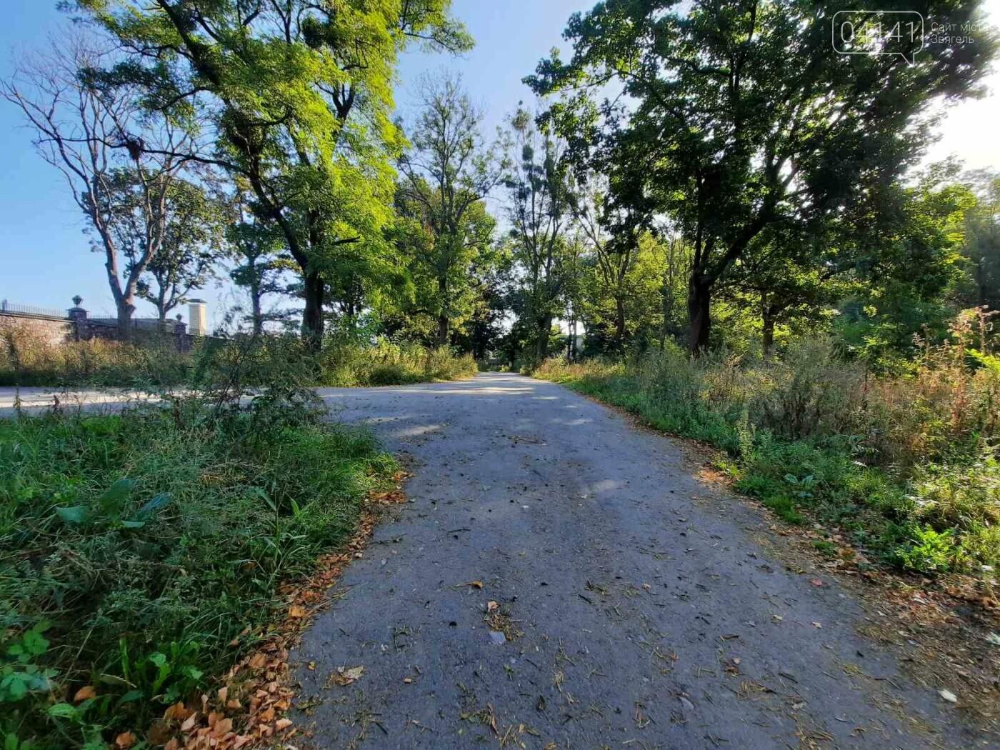 """Початок осені у парку на """"Болгарбуді"""": Що милує та """"ріже"""" око (ФОТО), фото-4"""