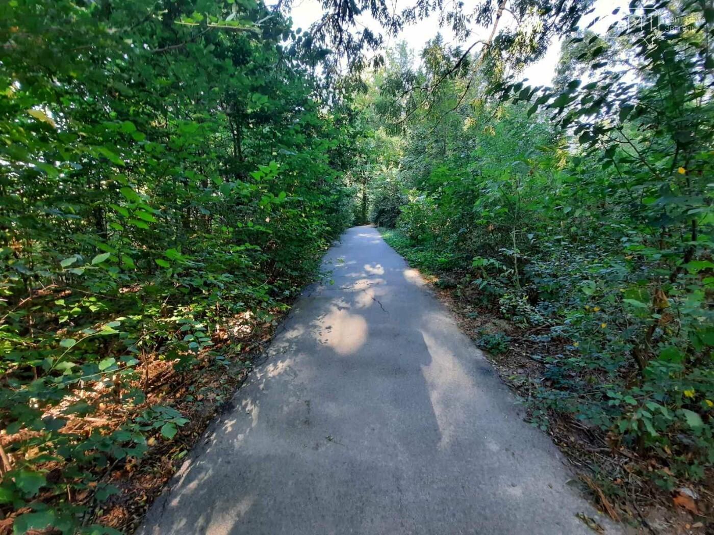 """Початок осені у парку на """"Болгарбуді"""": Що милує та """"ріже"""" око (ФОТО), фото-5"""