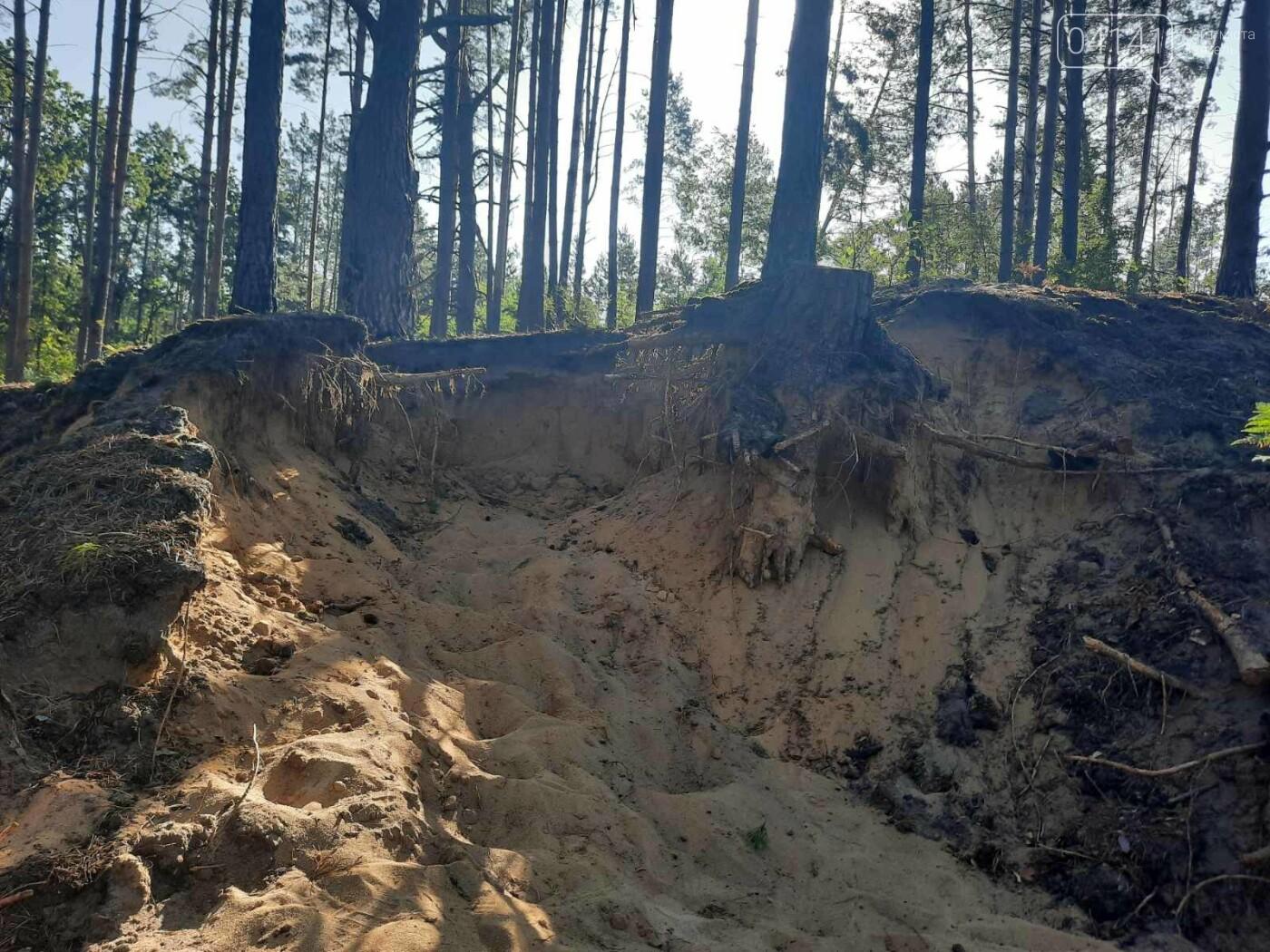 Залишки давнього поселення бронзової доби виявили на Новоград-Волинщині , фото-1
